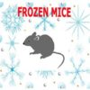 Frozen Mice - Extra Large