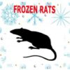 Frozen Rats - X Large