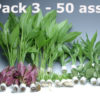Plant Pack 3 (50 Pieces)